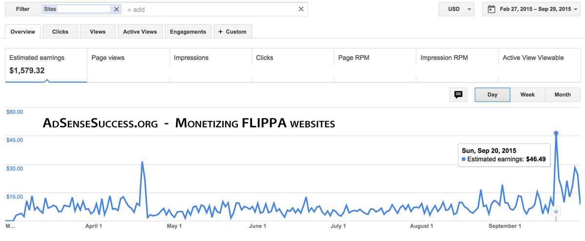 Flippa Website Adsense Income - 7 months
